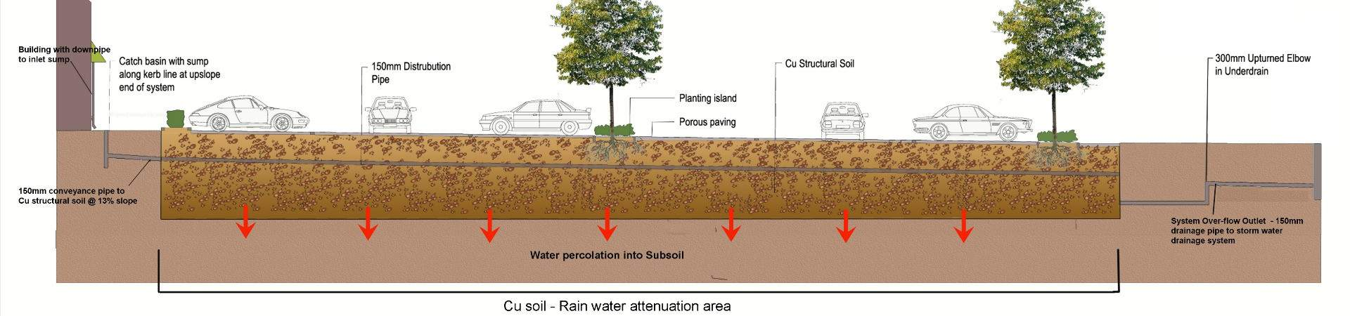 CU Structural Tree Soil