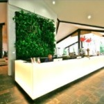 Green Wall - internal system1
