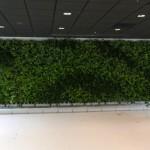 Green Wall - internal system3
