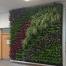 Fin Ben Green Living Wall | Teagasc Dublin