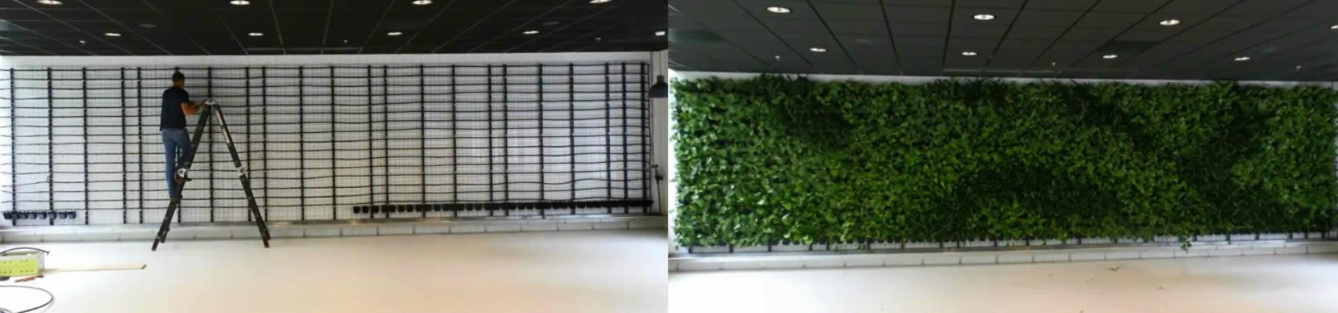 Green Wall - Bespoke